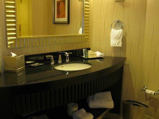 Hilton Rosemont / Chicago O'Hare: Washrooms