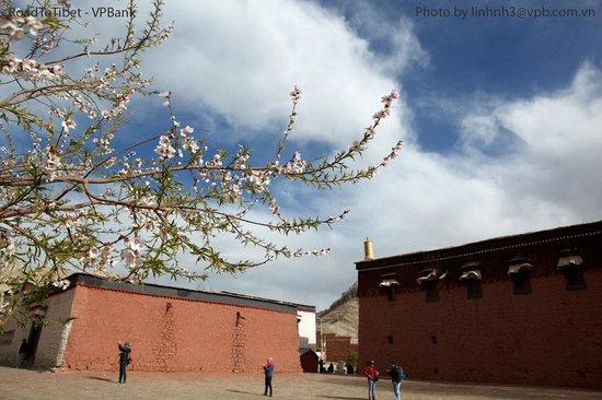 Road To Tibet-Day Tour