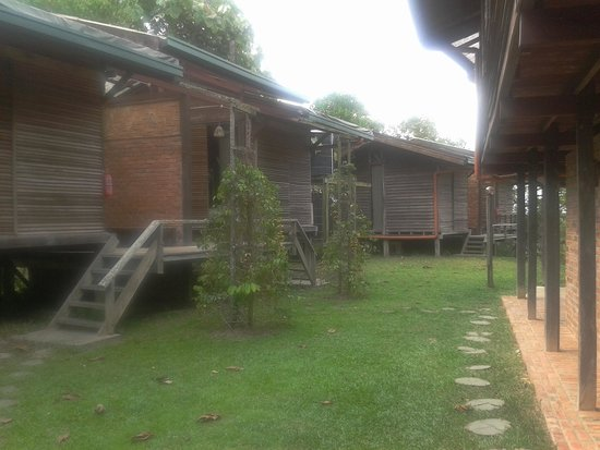Paganakan Dii Tropical Retreat: Chalet area