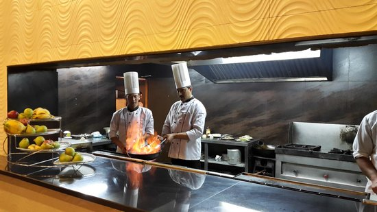 Restaurant Kitchen Counter live kitchen counter - picture of koti resort, shimla - tripadvisor