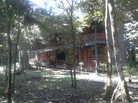 Kinabatangan Jungle Camp: Area outside of rooms