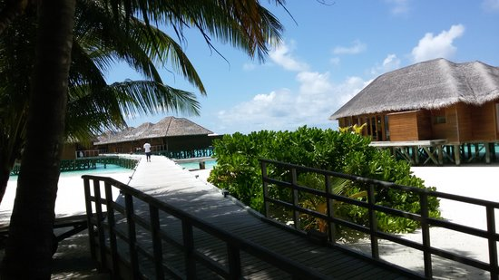 Vakarufalhi Island Resort: way to water villas