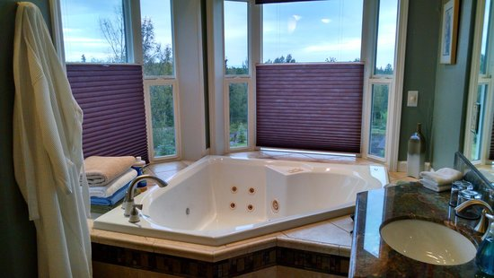 Alaska Sundance Retreat Bed and Breakfast, LLC: JACUZZI