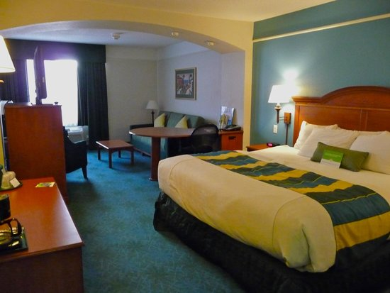 La Quinta Inn & Suites Rapid City : king suite - 2nd floor