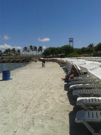 Paradise Beach : playa