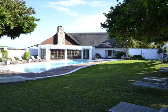 Whale Rock Luxury Lodge: View across tthe garden to the pool area