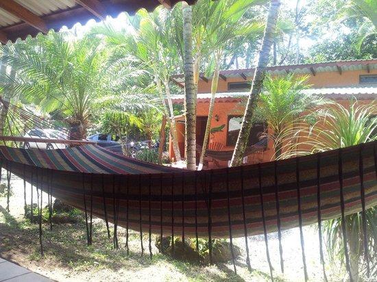Hotel Caribbean Coconut: El lugar perfecto para desconectar y relajarte.