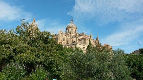 Jardín el Huerto de Calixto y Melibea: la catedral desde el mirador del huerto