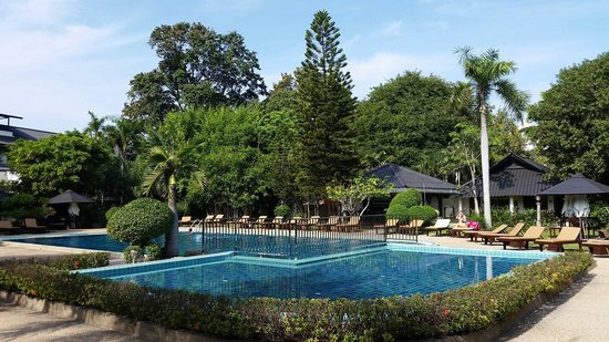 Sunshine Garden Resort: Pool view