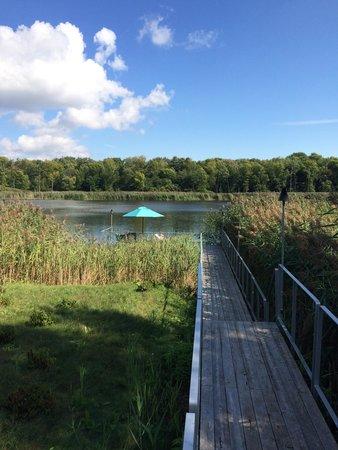 Strom Spa Nordique Ile-des-Soeurs: Down by the lake