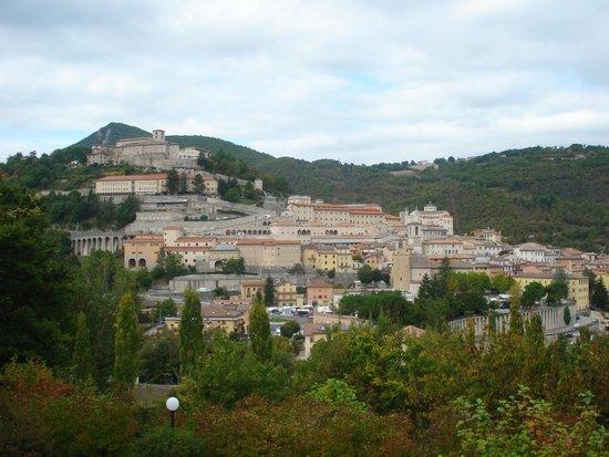 Hotel Villa Stella: cascia