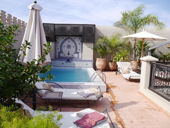 Riad le Clos des Arts: The plunge pool on the rooftop terrace