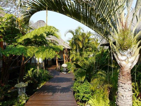 Lodge Afrique: Outside Room 4