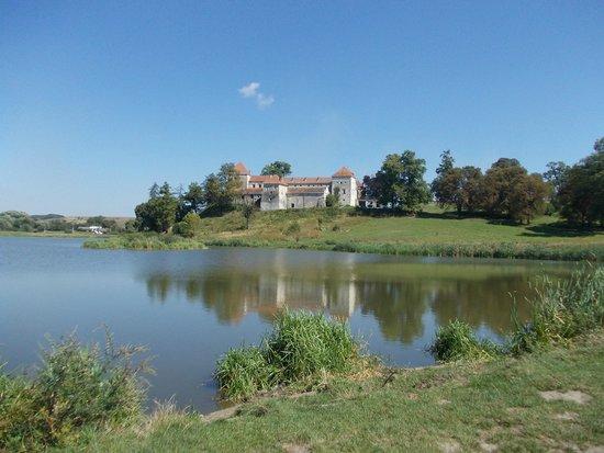 Svirzh Castle: Vista panoramica dal lago