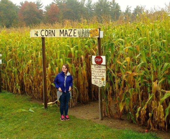 Washburn's Windy Hill Orchard: Tall Corn