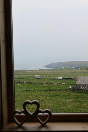 Aiden House: Vista dalla camera