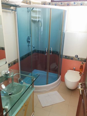 Raj Niwas Hotel: Bathroom