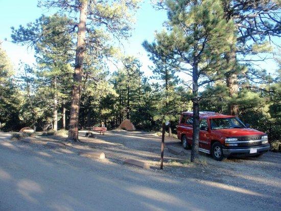 North Campground: Excelent Campsite