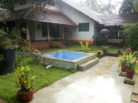 The house and the fish pond - Picture of Wayanad Coffee County ...
