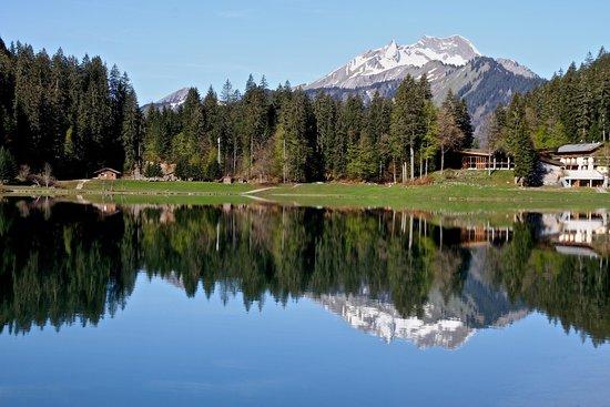 Ski Hotels Near Geneva