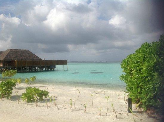 Water view from narrow partof rangali picture of conrad for Conrad maldives rangali