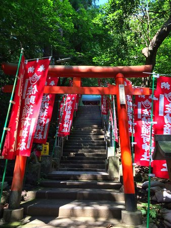 Sasuke Inari Shrine: 上山小径。
