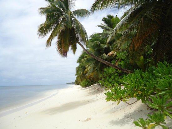 Desroches Island: Private villa beach