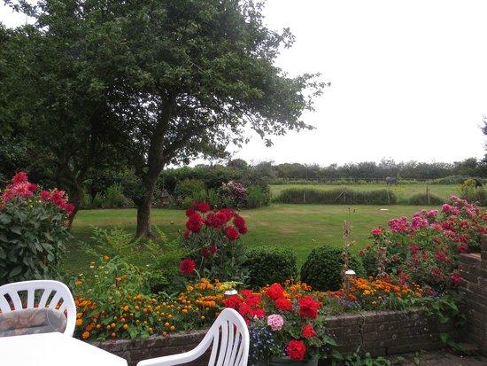 Copsewood House: The spacious garden