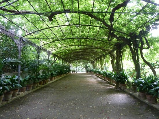 Guide to malaga outdoors travel guide on tripadvisor for Jardin botanico concepcion