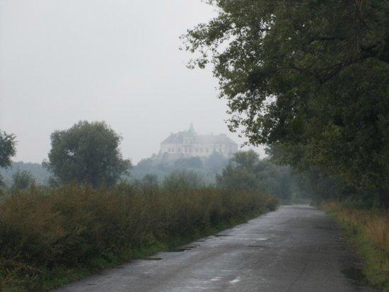Olesko Castle : Castello in lontananza