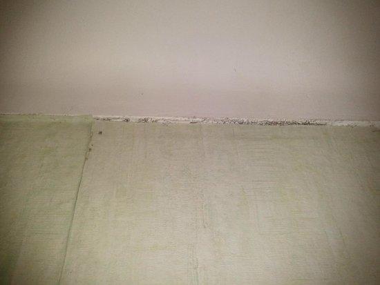 Moisissures chambre photo de hotel les regates le barcares tripadvisor - Moisissure tapisserie chambre ...
