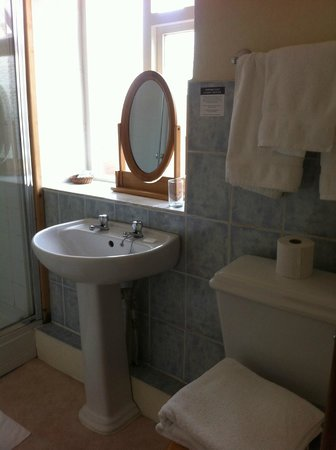 Hawthorns Hotel, Bar and Restaurant: washbasin with the only mirror in the room