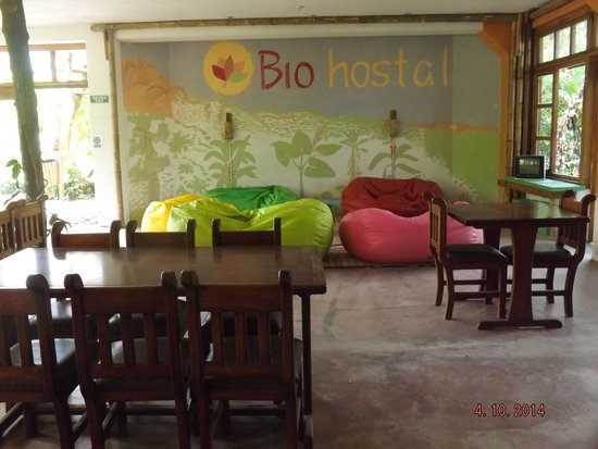 Bio Hostal Mindo Cloud Forest: Sala