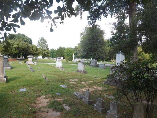 Historic Oakwood Cemetery : Lovely views