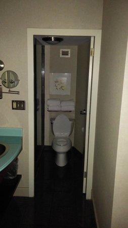 Crowne Plaza Hotel: Toilet