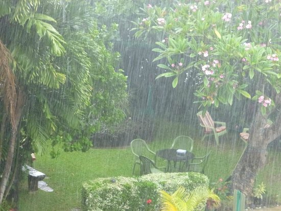 Garden Island Inn Hotel: Gardens during a brief Tropical Shower