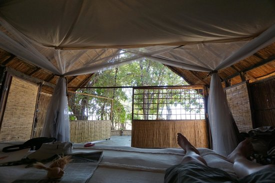 Luwi Bush Camp - Norman Carr Safaris: view from our room