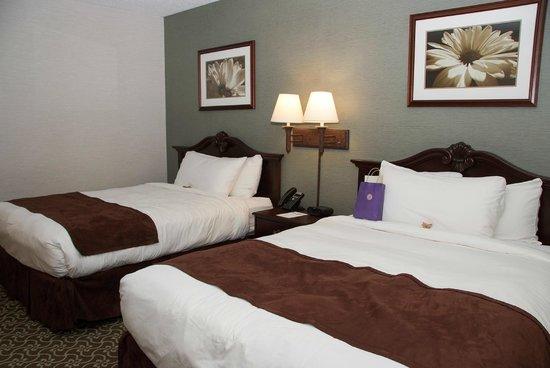 D. Hotel & Suites: One Bedroom Suite