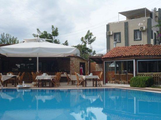Moonshine Hotel & Suites: Pool