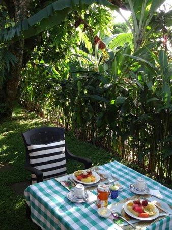 Anne's Maisonnette : Le petit-déjeuner dans le jardin de la maison