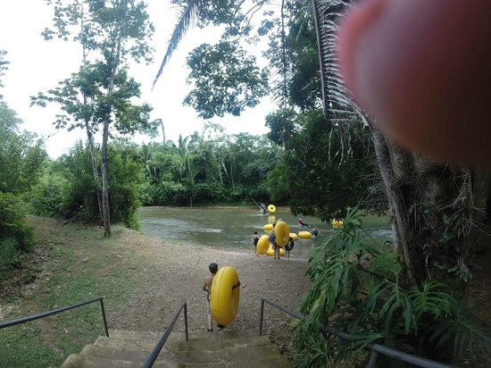 Belize Jungle Trek : A view of the river