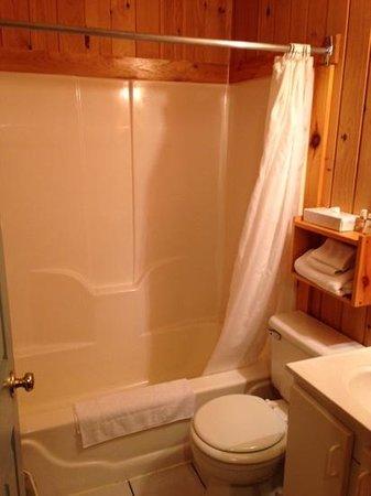 Stanley Bridge Country Resort: Bathroom in Lodge