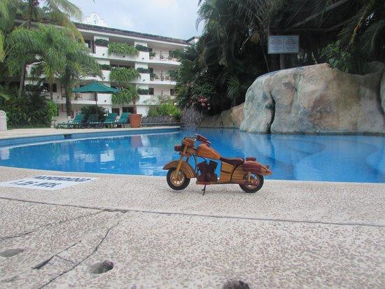 Casa Iguana Hotel : grounds
