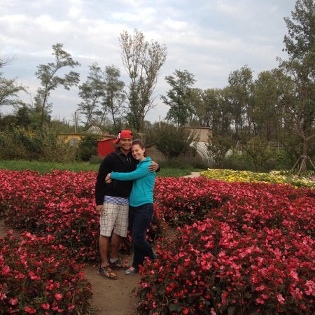 Qinghuang Island Wildlife park: Floral area