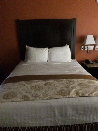 Park Vue Inn: Queen bed room 235