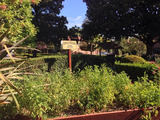 Paso Robles Inn : Herb & vegetable garden for Steakhouses.