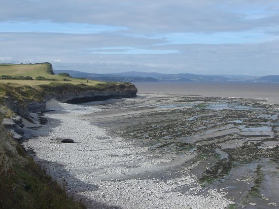 Arden Cottage Bed and Breakfast: Fossil-rich coast at Kilve