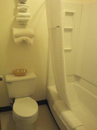 Super 8 Great Falls Mt: Bathroom