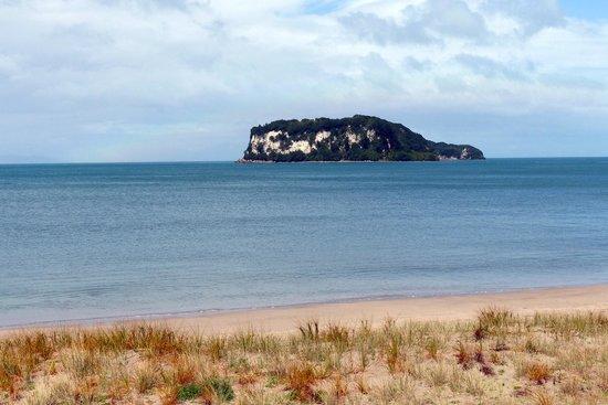 Whenuakura Island