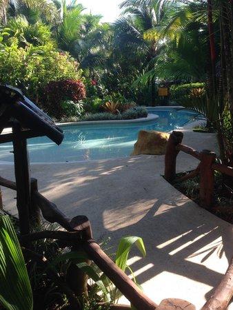 Azania Bungalows: The Pool